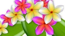 Flores estilo hawaiano