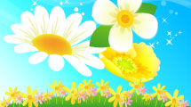 Flores Primaveral