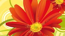 Flores rojas sobre amarillo