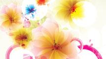 Flores transparentes
