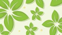 Florido en verde
