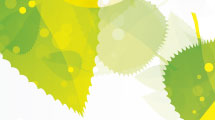 Fondo abstracto con hojas