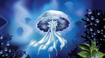 Fondo de mar con gran medusa