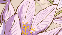 Fondo floral lila abstracto
