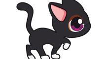 Gato de ojos saltones