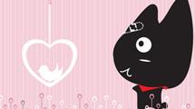 Gato negro con lazo rojo