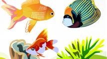 Grupo de peces y alga