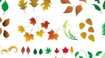 Hojas de árbol de toda especie