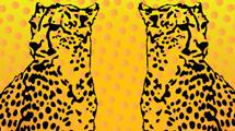 Leopardos en pareja
