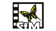 Logo Magnetic city