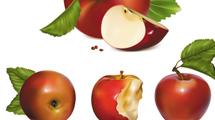 Manzanas realistas