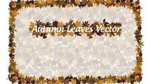Marco otoñal de hojas de árbol