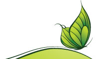 Mariposa ecológica
