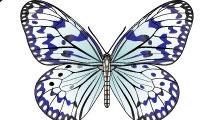 Mariposas con detalles