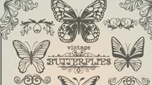 Mariposas vintage en color gris