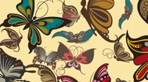 Motivo con mariposas