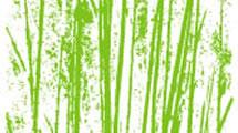 Ornamentos de Bambú
