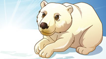 Oso Polar reposando