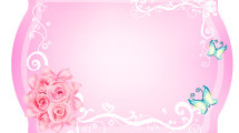 Pack de Flores 2