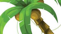 Palmeras con lianas