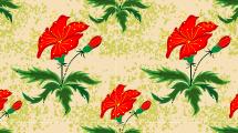Patrón Floral 5