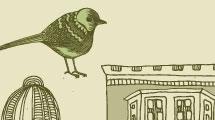 Pájaros de ciudad
