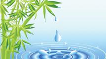 Plantas de bamboo