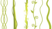 Plantas y lianas verdes