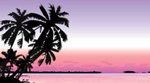 Playa al atardecer con palmeras