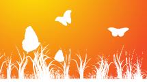 Primavera y Mariposas