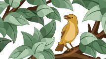 Árbol con pájaro