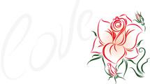 Rosa lineal con mensaje