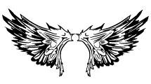 Set con alas