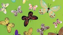 Set con mariposas