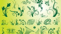 Set de ramas de color verde