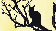 Silueta de gato sobre rama