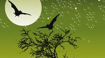 Silueta de árbol con murciélagos