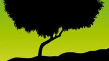 Silueta de árbol sobre fondo verde