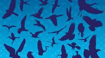 Siluetas azules de aves