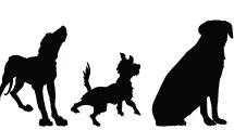 Siluetas caninas