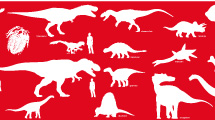 Siluetas de Dinosaurios