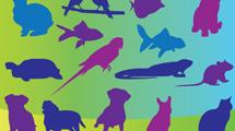 Siluetas de mascotas