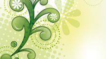 Swirls verdes abstractos con fondo claro