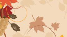 Tarjeta con hojas y uvas