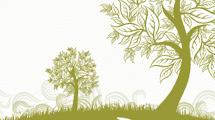 Tarjeta con árbol verde