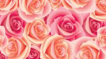 Tarjeta valentines