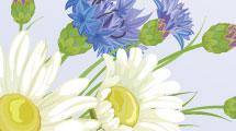 Tarjetas con flores