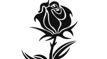 Tatuaje de rosa negra con espinas
