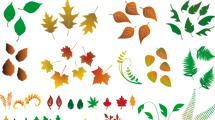 Variedad de hojas de árboles
