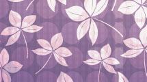 Violeta con flores